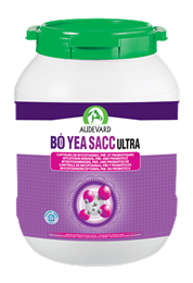 <p>Bo Yea Sacc Ultra is a nutritional supplement from Audevard, containing pre & probiotics as well as a mycotoxin binder, to improve the general wellbeing of your horse's digestive system. </p>