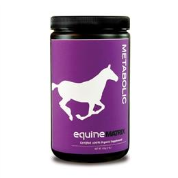 "<p>Metabolic Matrix, by Mushroom Matrix, is an innovative Equine supplement, which can be fed to horses with metabolic issues, such as Cushing's Disease or Equine Metabolic Syndrome (EMS). It helps support a normal glucose metabolism and maintain a healthy kidney, liver and endocrine function. </p> <p>Metabolic Matrix is 100% organic and made up of a precise blend of medicinal mushrooms. The naturally derived antioxidants, vitamins and minerals contained within the mushrooms, have been found to improve general health and wellbeing, as well as metabolic function. </p> <p><em><strong><span style=""color: rgb(192, 80, 77);"">Please note that the transit time for this product is 5-7 working days</span></strong></em><strong><span style=""color: rgb(192, 80, 77);""></span></strong><br> </p> <p><br> </p>"