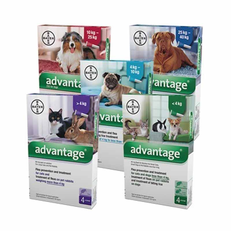Advantage Spot-On Solution 4 Pack