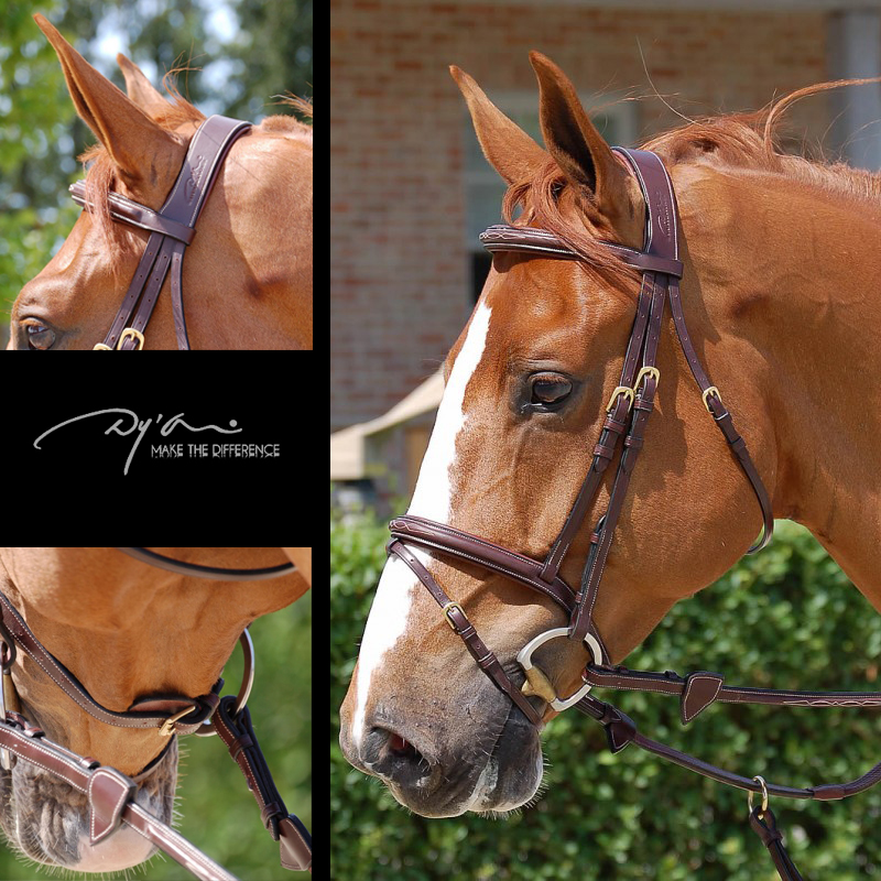 Dy'on Flash Noseband Bridle (B131)