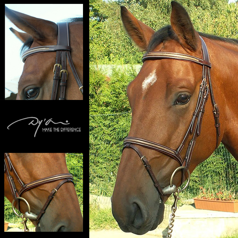 Dy'on 'Snake' Flash Noseband Bridle (B135)
