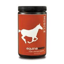 <p>Helps bulk, definition and strength. For hard keepers, young horses and horses in training. The professionals choice for safe and natural muscle development. Muscles Matrix 100% organic blend contains triterpenes compounds that react at the cellular surface sites within the muscle tissue to support muscle development. Supports elimination of the harmful byproduct of exercise therefore helps better recovery. Supports muscle, nervous system and normal circulation. </p>