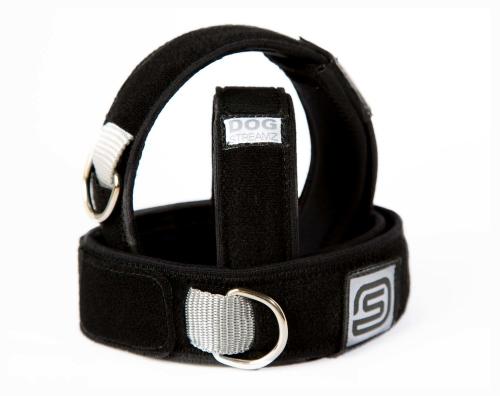 DOG StreamZ Smart Collar