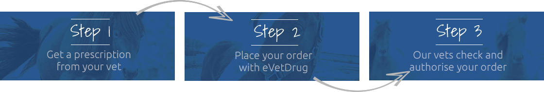 How to place your order.png