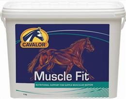<p>Cavalor Muscle Fit is a comprehensive, high quality supplement that has been formulated to improve and maintain muscle suppleness and flexibility. It is ideal for horses in hard work or those who are prone to tying-up (azoturia) or muscle inflammation. </p>