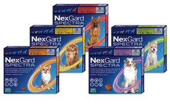 NexGard Spectra Chewable Tablets for Very Small Dogs