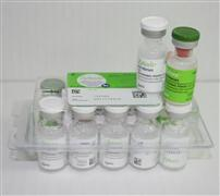 Immune-related Medication